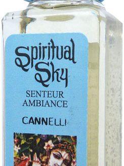 Huile parfumée Cannelle Spiritual Sky 10ml