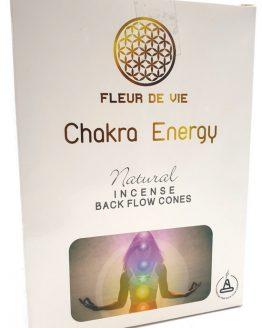 Cônes Backflow Chakra Energy Fleur de Vie